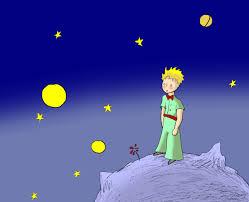stelle principe
